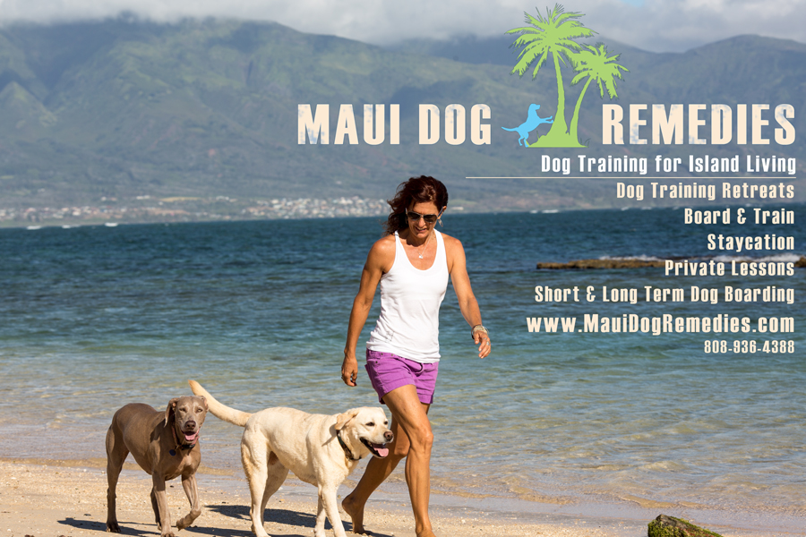 Maui Dog Training and Boarding