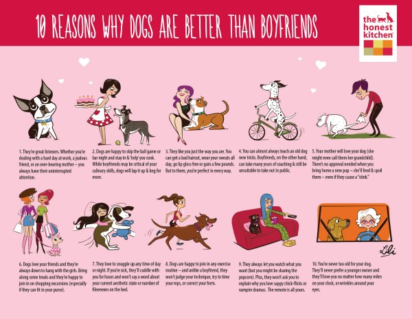 Reasons Dogs are Better than Boyfriends
