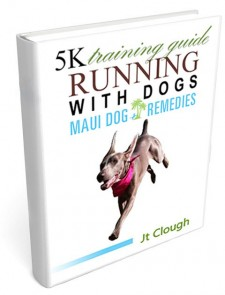 5K Training Guide | Running with Dogs