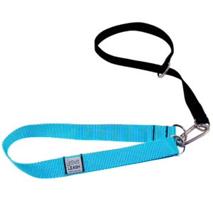Training leashes for dogs